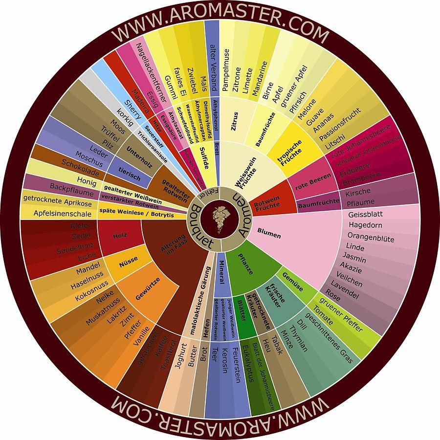 Wein Aromen für die Weinprobe 2020 der Gesellschaft 1938